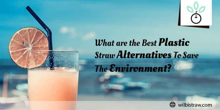 best Plastic Straw