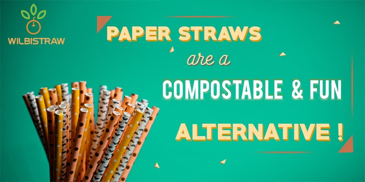 Buy Paper Straws