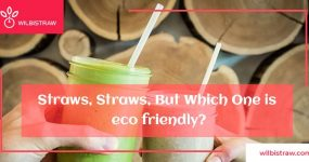 Straws, Straws, But Which One is Eco Friendly