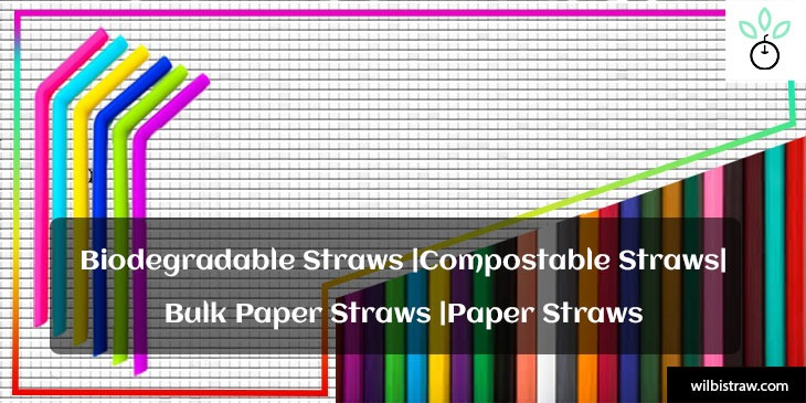 biodegradable straws |compostable straws |bulk paper straws |paper straws