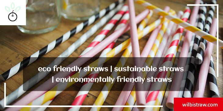 eco friendly straws sustainable straws environmentally friendly straws
