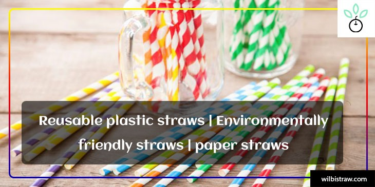 Reusable Plastic Straws| Environmentally friendly Straws| Paper Straws
