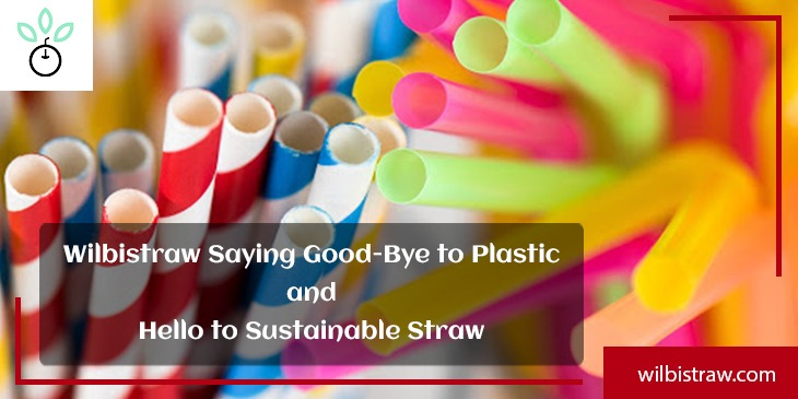 Wilbistraw Saying Good-Bye to Plastic and Hello to Sustainable Straw