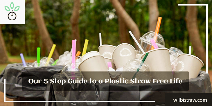 Our 5 Step Guide to a Plastic Straw Free Life