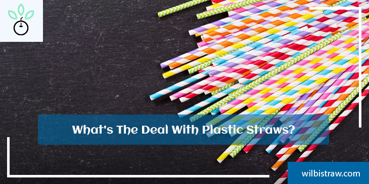 What's The Deal with Plastic Straws?