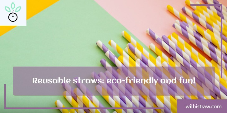 Reusable Straws: Eco-friendly and Fun!