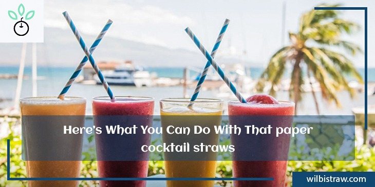 Here is What You can Do With Paper Cocktail Straws