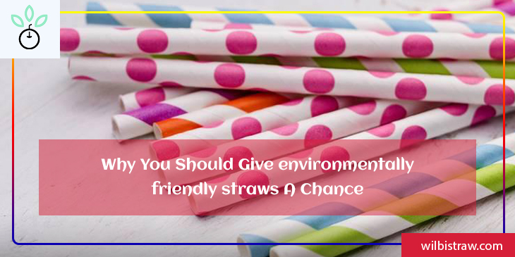Why You should Give Environmentally Friendly Straws A Chance