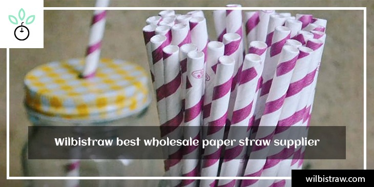 Wilbistraw best wholesale paper straw supplier