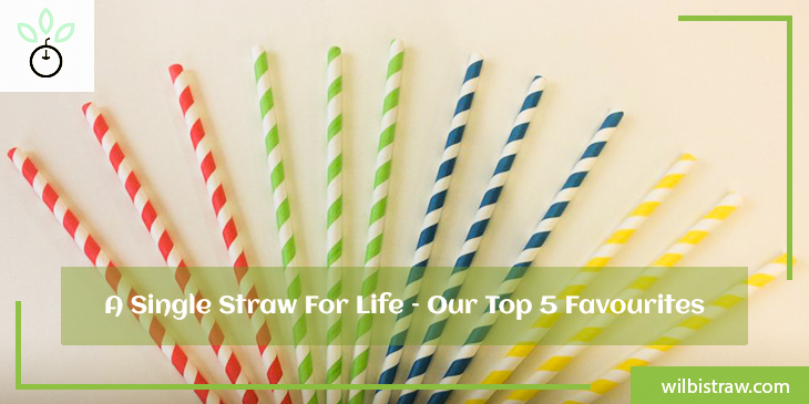 A Single Straw For Life – Our Top 5 Favourites