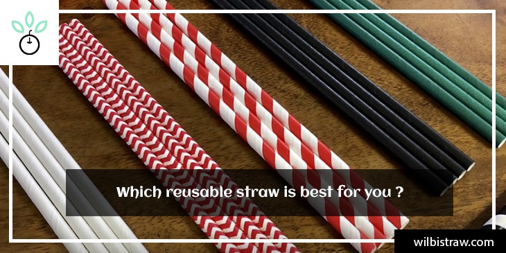 Which reusable straw is best for you?