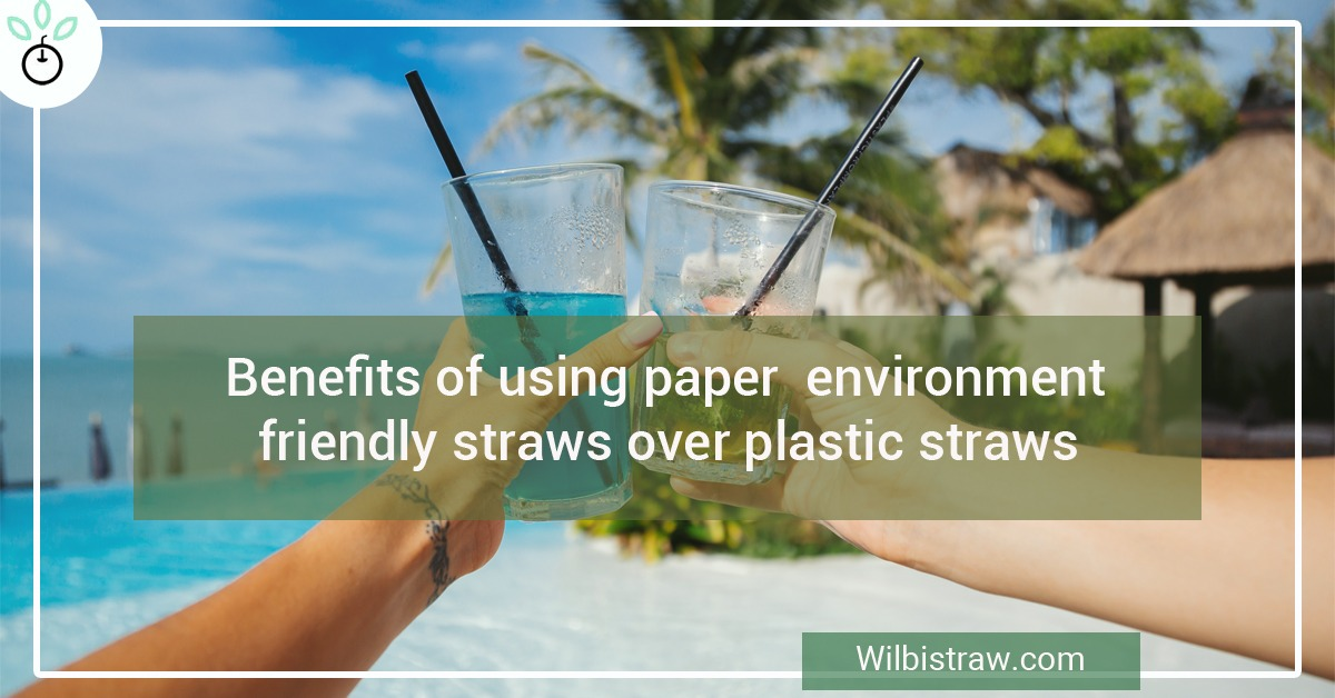 Benefits of Using Paper environmentally friendly straws over Plastic Straw