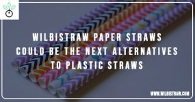 Wilbistraw Paper Straws Could Be the Next Alternatives to Plastic Straws